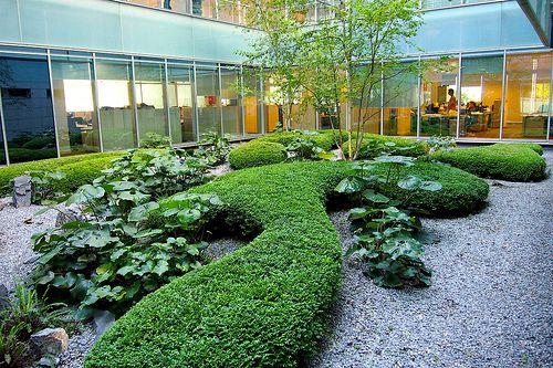 mantenimiento de jardines oficinas
